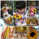 Sunflower activity in our Brainy Montessori Class